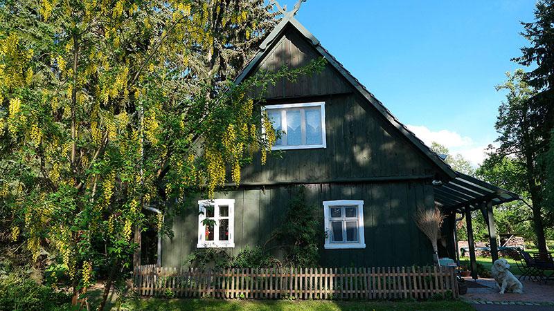 Aussenansicht vom Ferienhaus und Grundstück